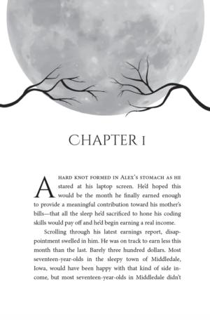 The Secret of Spellshadow Manor, paperback